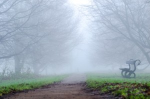 walking home in the fog